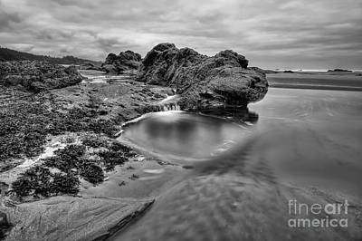 Central Oregon Coast Photograph - Tide Pool by Masako Metz