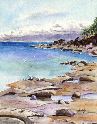 Tides Out At Tribune Bay On Hornby Island Art Print