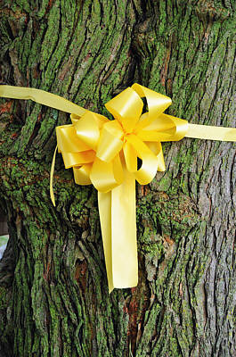 Tie A Yellow Ribbon Art Print by Lyle  Huisken