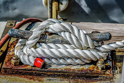 Photograph - Tie Down by Jon Burch Photography