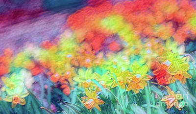 Photograph - Tie Dyed Daffodils by Cathy Donohoue
