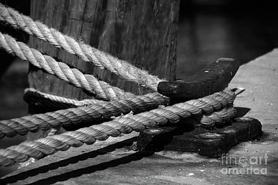 Technical Photograph - Tied Down by Susanne Van Hulst
