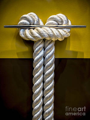 Balance In Life Photograph - Tied Up In Knots by James Aiken