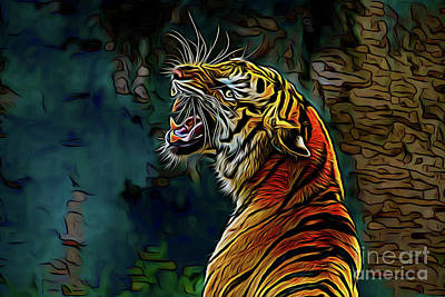 Photograph - Tiger 17818 by Ray Shrewsberry