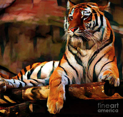 Photograph - Tiger 19618 by Ray Shrewsberry