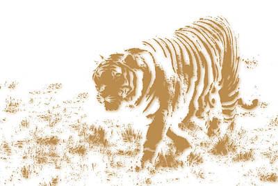 Tiger 2 Art Print by Joe Hamilton