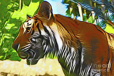 Photograph - Tiger 20318 by Ray Shrewsberry