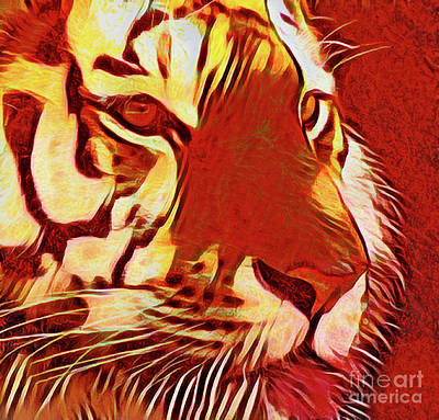 Photograph - Tiger 20518 by Ray Shrewsberry