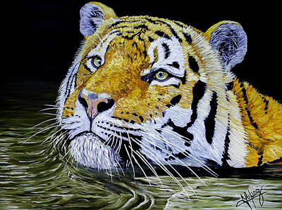 Tiger 24x18x1 Inch Oil On Gallery Canvas Original
