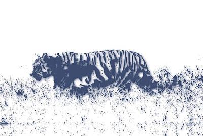 Zimbabwe Photograph - Tiger 4 by Joe Hamilton