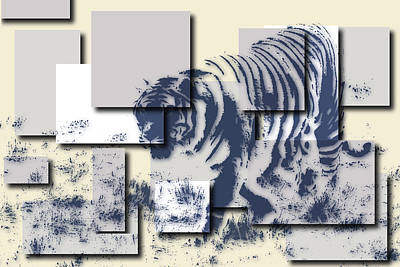 Tiger Hunt Photograph - Tiger 5 by Joe Hamilton