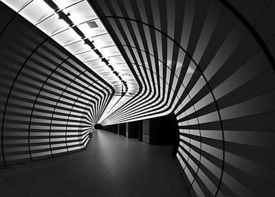 Metro Photograph - Tiger by Arnd Gottschalk