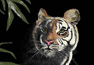 Tiger Art Print by Carole Boyd