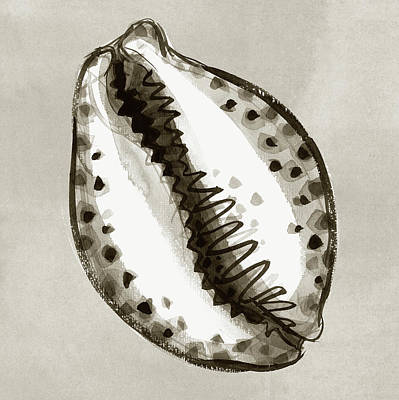 Painting - Tiger Cowrie by Judith Kunzle