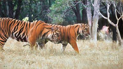 Tiger Crossing Print by Judy Kay