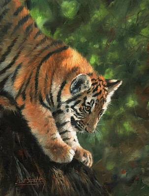 Big Cats Painting - Tiger Cub Climbing Down Tree by David Stribbling