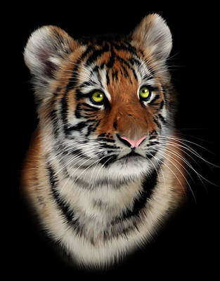 Tigris Digital Art - Tiger Cub Portrait by Julie L Hoddinott