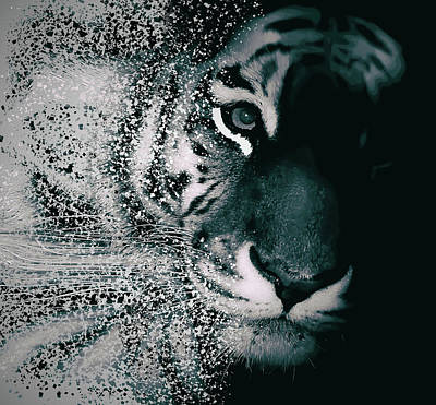 Human Head Photograph - Tiger Dispersion by Martin Newman