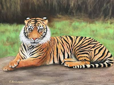 Painting - Tiger by Francine Henderson