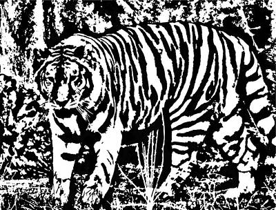 Digital Art - Tiger In Black And White by Cathy Harper