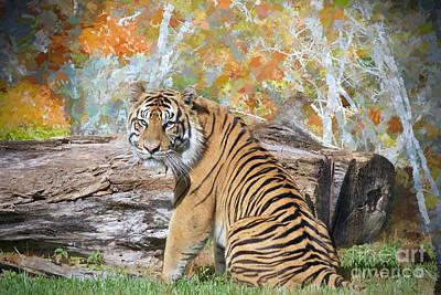 Tiger In Spring Art Print