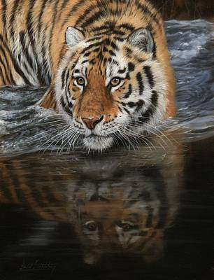Painting - Tiger In Water by David Stribbling