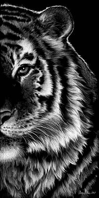 Wall Art - Drawing - Amur by Laurie Musser