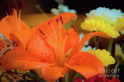 Photograph - Tiger Lily One by Patti Whitten