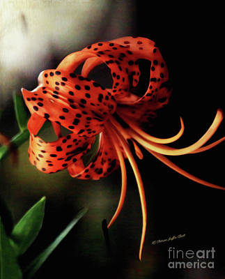 Digital Art - Tiger Lily by Patricia Griffin Brett
