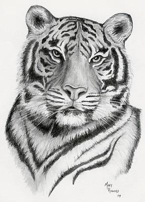 Tiger Art Print by Mary Rogers