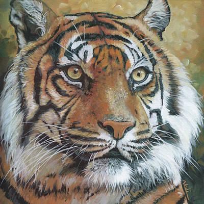 Painting - Tiger by Nadi Spencer