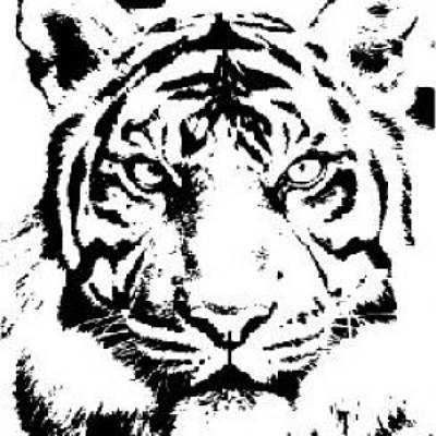 Digital Art - Tiger by Now