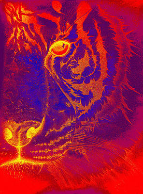 Tiger On Fire Art Print