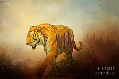 Photograph - Tiger On The Prowl by Janette Boyd