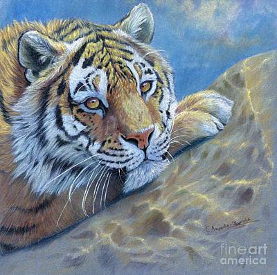 Red Rock Drawing - Tiger On The Rock by Svetlana Ledneva-Schukina