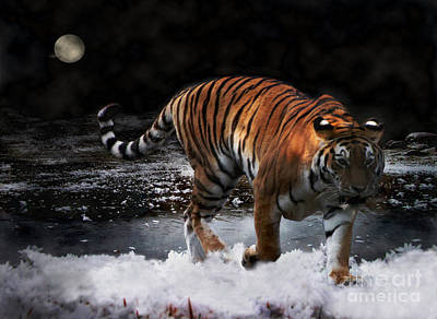 Art Print featuring the photograph Tiger On The Run by Jacqi Elmslie