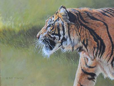 Painting - Tiger Portrait by Alan M Hunt