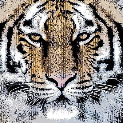 Coach Party Digital Art - Tiger Portrait In Graphic Press Style by Garaga Designs