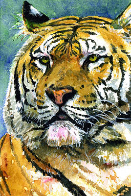 Painting - Tiger Portrait by John D Benson