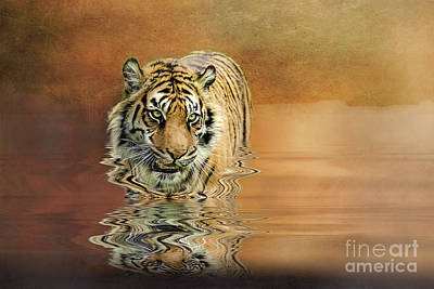 Photograph - Tiger Reflections by Brian Tarr