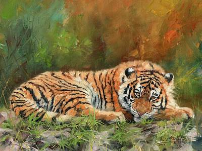 Tiger Repose Original by David Stribbling
