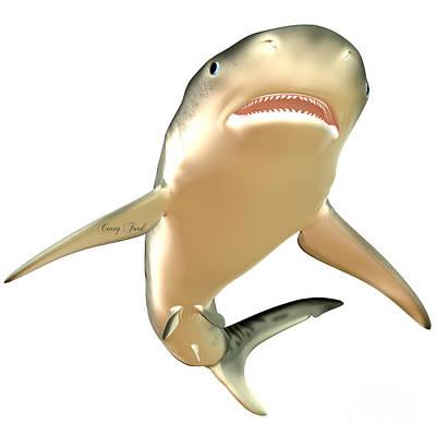 Tiger Shark Body Art Print by Corey Ford