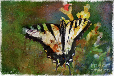 Photograph - Tiger Swallowtail Butterfly 6 by Debbie Portwood