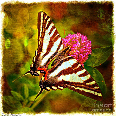 Photograph - Zebra Swallowtail Butterfly - Digital Paint 3 by Debbie Portwood