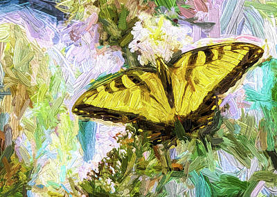 Photograph - Tiger Swallowtail Butterfly by John Freidenberg