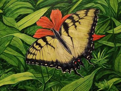Painting - Tiger Swallowtail by Gary Edward Jennings