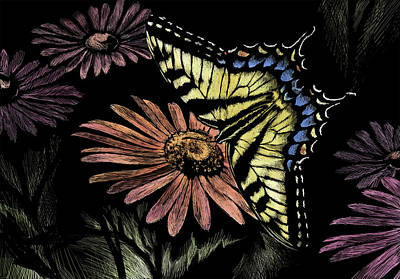 Wall Art - Drawing - Tiger Swallowtail by Laurie Musser