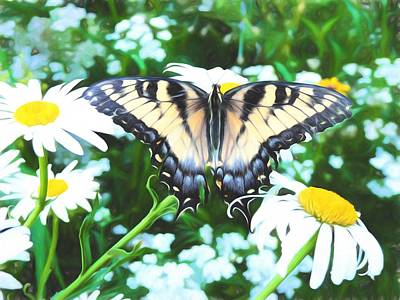 Swallow Photograph - Tiger Swallowtail Life by JC Findley