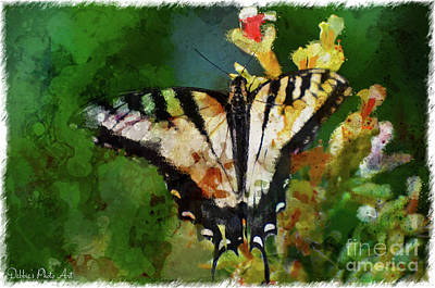 Photograph - Tiger Swallowtail Butterfly 5 by Debbie Portwood