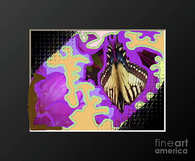 Photograph - Tiger Swollowtail Butterfly by Shirley Moravec